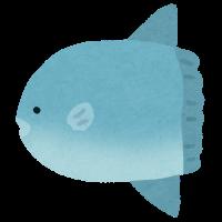 :stamp_fish_mola2: